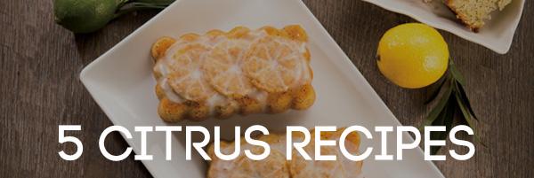 5 Citrus Recipes headline