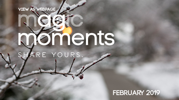View as Web Page...Magic Moments. Share Yours