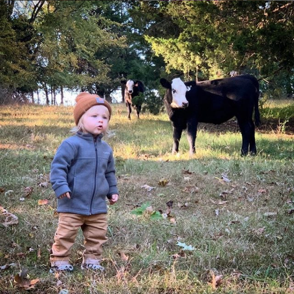 instagram image of a baby and a cow